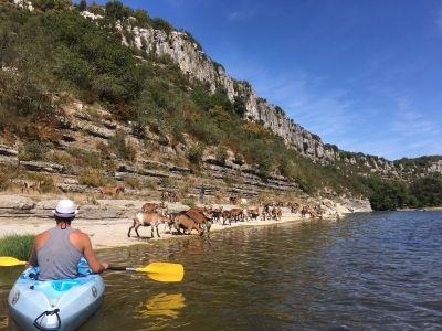 Canöe kayak sur l'Ardèche