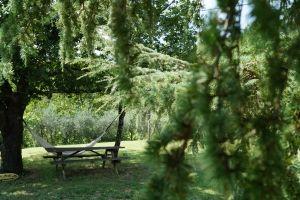 Espace détente sous le chêne