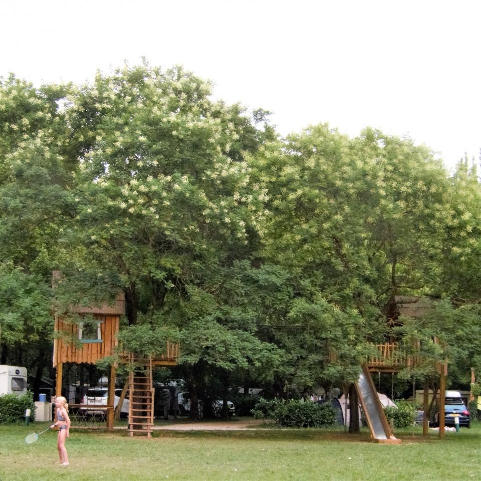 Jeu dans les arbres pour enfants