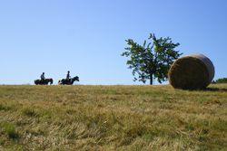 Rando Cheval Ardèche